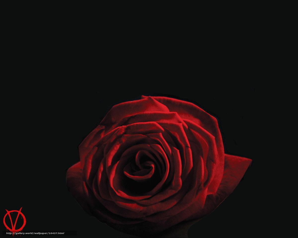 Descargar gratis «V» Vendetta,  V de Vendetta,  pelcula,  pelcula Fondos de escritorio en la resolucin 1280x1024 — imagen №10437