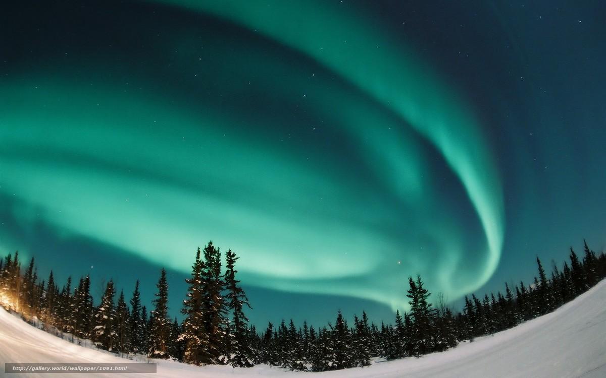 Scaricare gli sfondi aurora aurora boreale foresta for Sfondi desktop aurora boreale