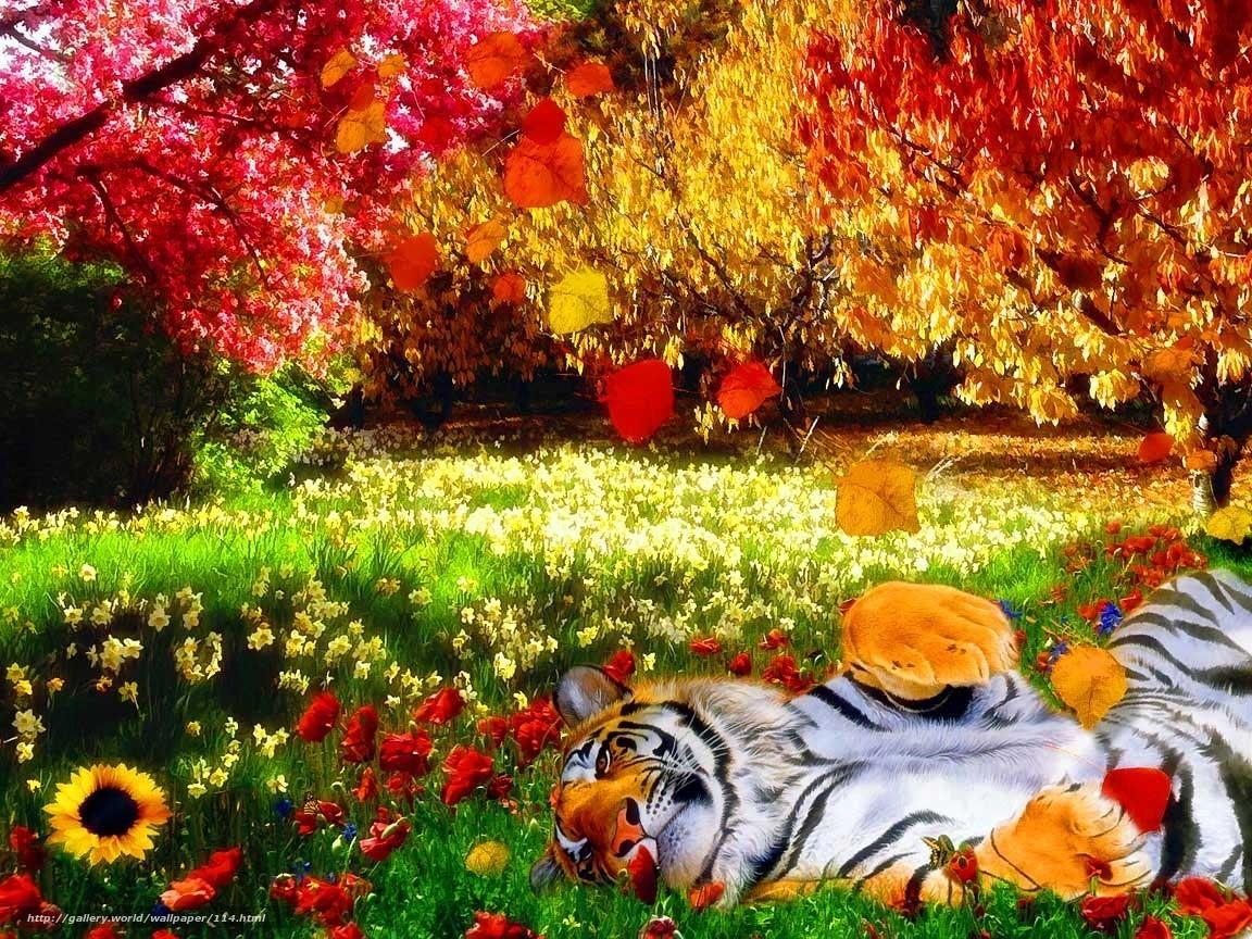 壁紙をダウンロード 虎,  自然,  明るい色,  熱 デスクトップの解像度のための無料壁紙 1152x864 — 絵 №114