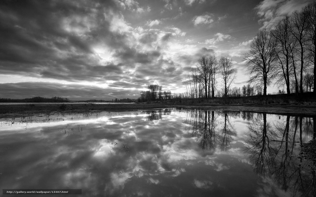 Tlcharger fond d 39 ecran noir et blanc arbres rflexion for Foto hd bianco e nero