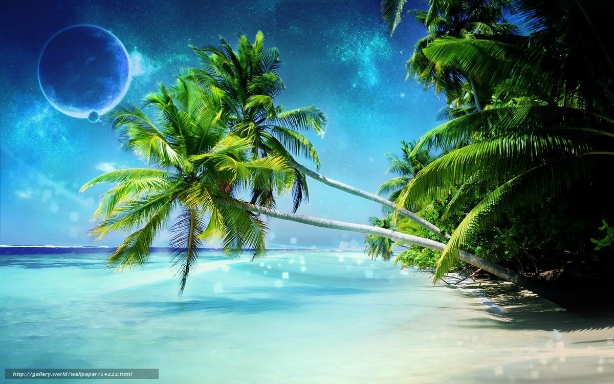 Background pictures for computer tropical