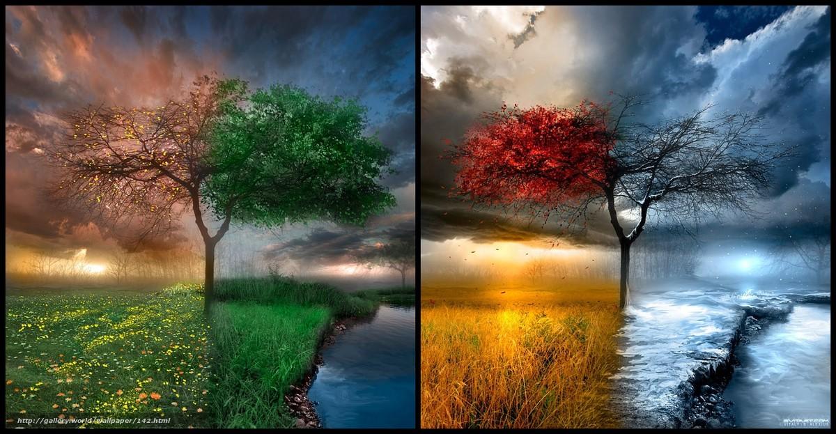 Скачать обои времена года,  место,  дерево,  природа бесплатно для рабочего стола в разрешении 1600x831 — картинка №142
