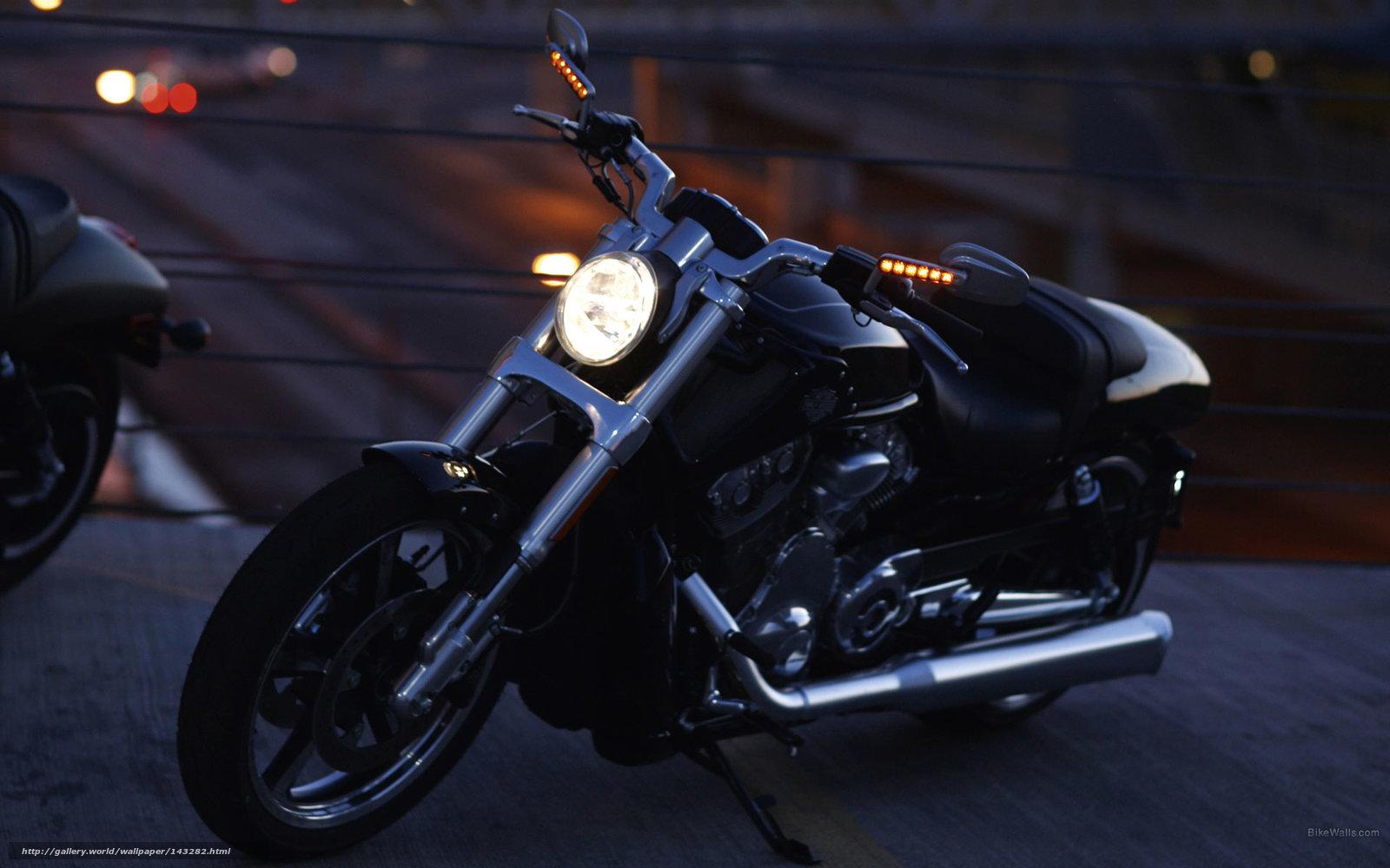 Descargar Gratis Harley Davidson Vrsc Vrscf V Rod Muscle
