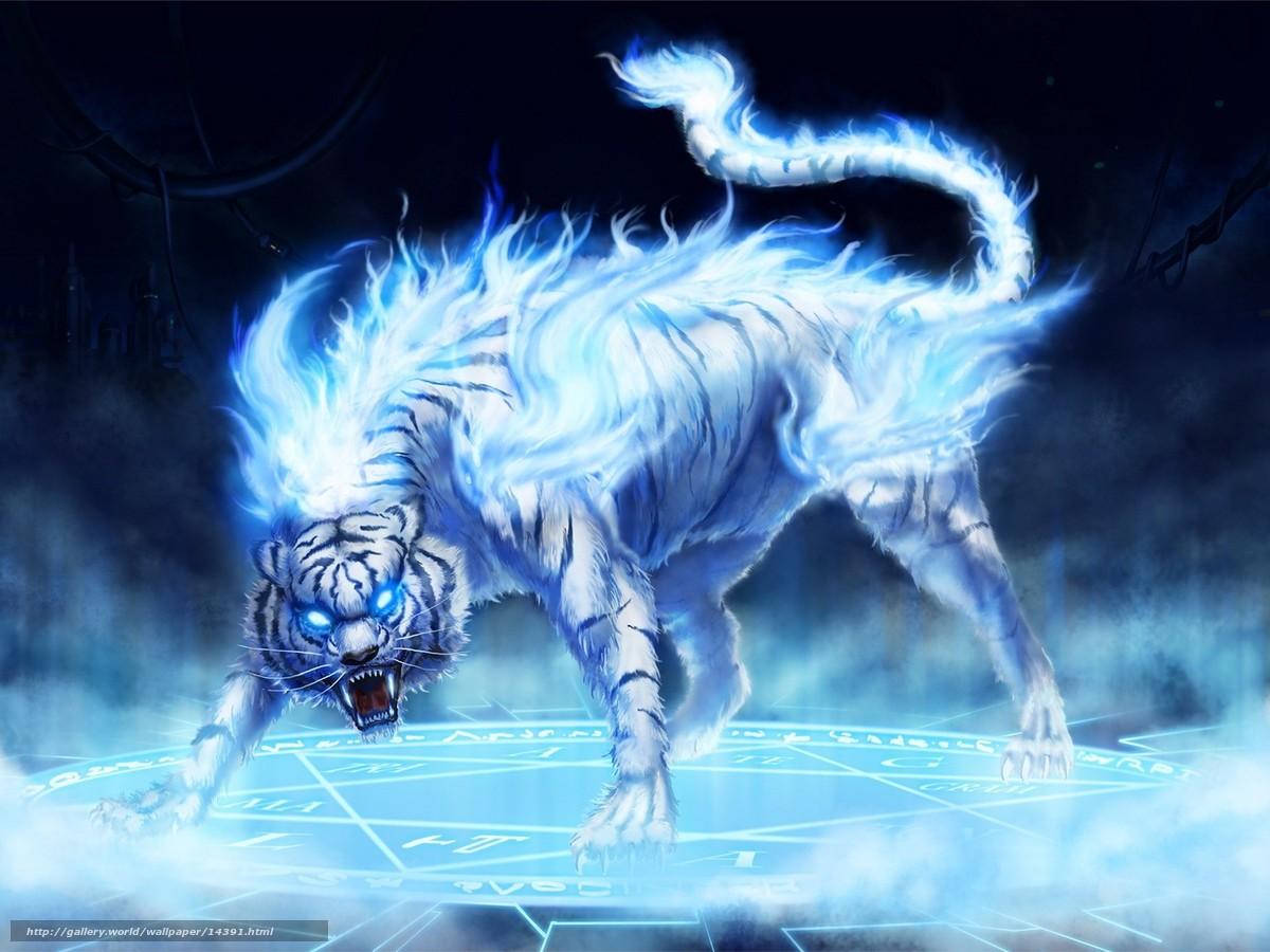 Scaricare Gli Sfondi Tigre Fuoco Blu Sfondi Gratis Per La