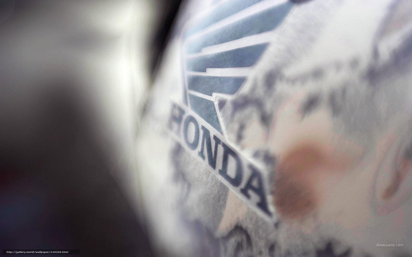 Download wallpaper Honda,  ATV,  FourTrax Rincon,  2006 FourTrax Rincon free desktop wallpaper in the resolution 1920x1200 — picture №145256