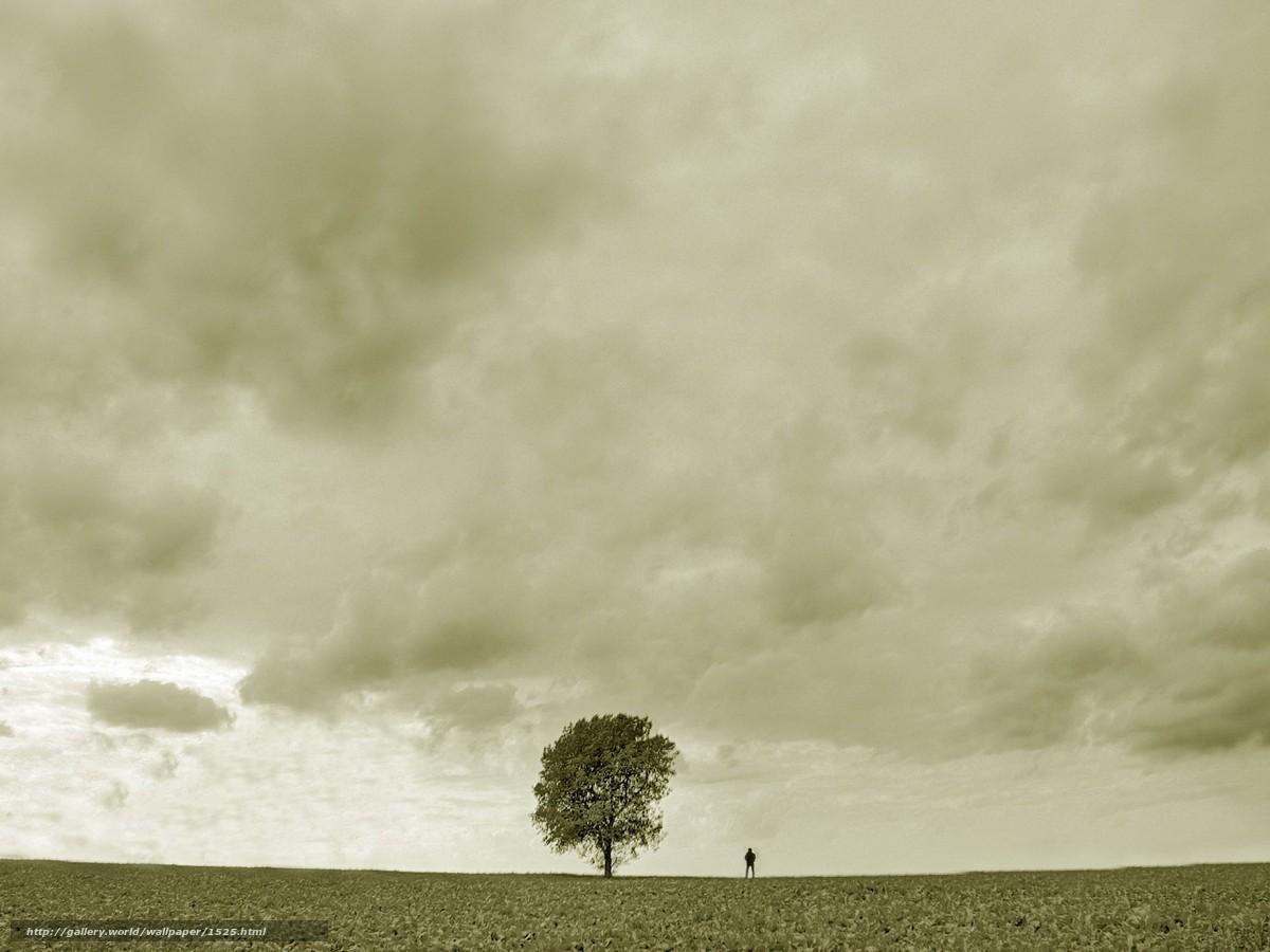 Скачать обои дерево,  человек,  грусть бесплатно для рабочего стола в разрешении 1920x1440 — картинка №1525