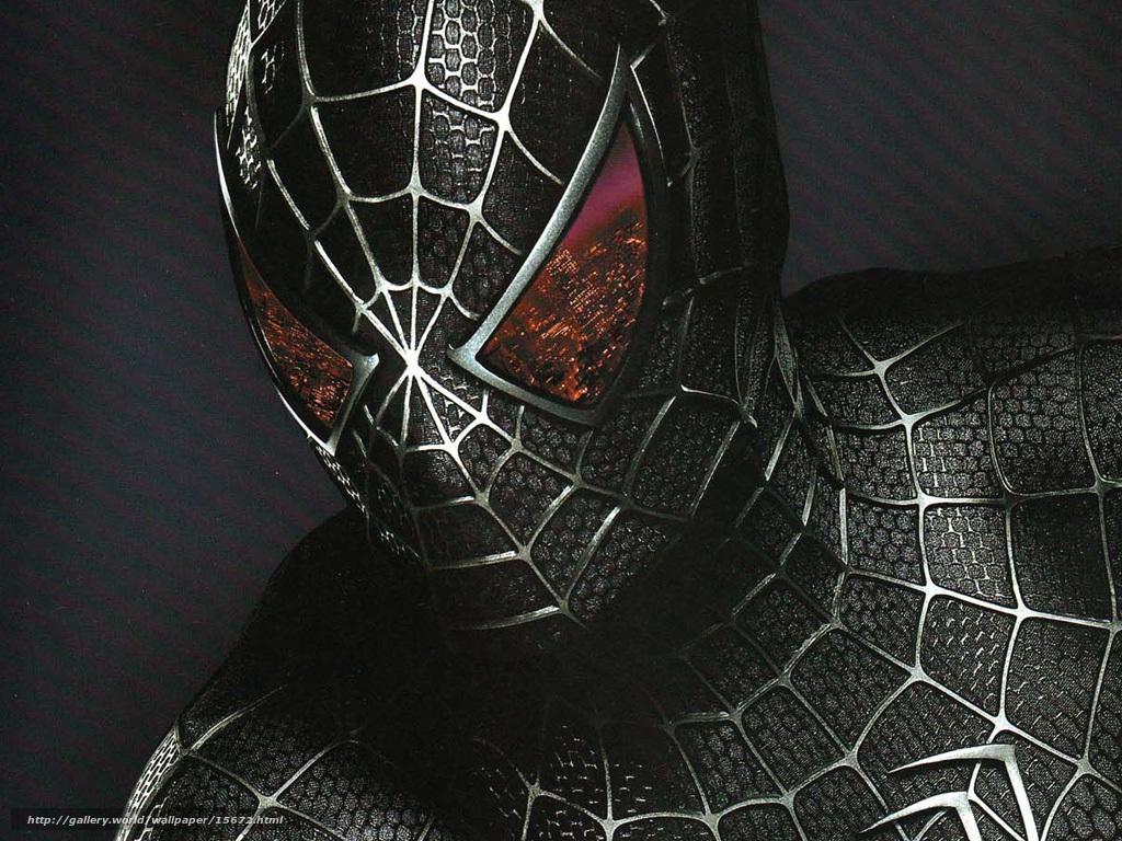Приметы про пауков  что обещает нам встреча с