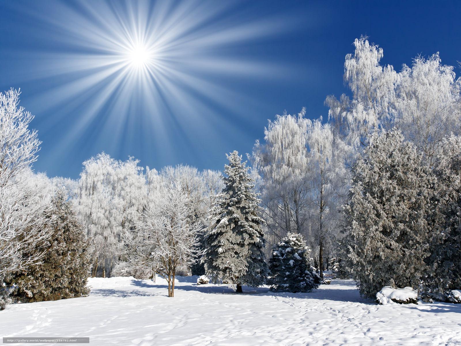 Scaricare Gli Sfondi Neve Sole Sfondi Gratis Per La Risoluzione Del
