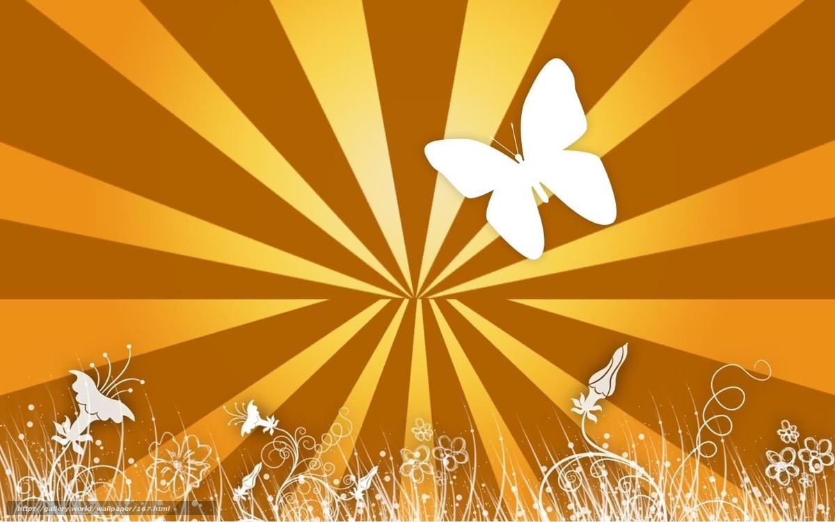 scaricare gli sfondi Farfalle,  gioia,  giallo,  linea Sfondi gratis per la risoluzione del desktop 1440x900 — immagine №167