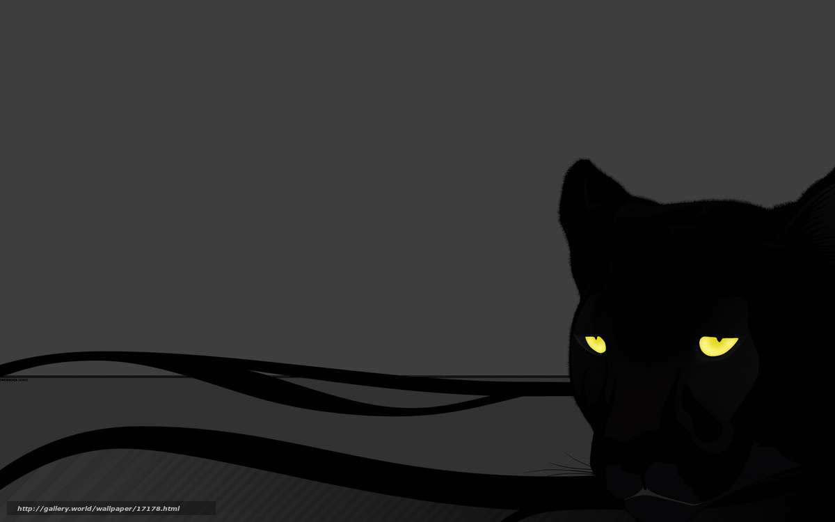 Baixar Wallpaper pantera, olhos, gato, cinza Papis de