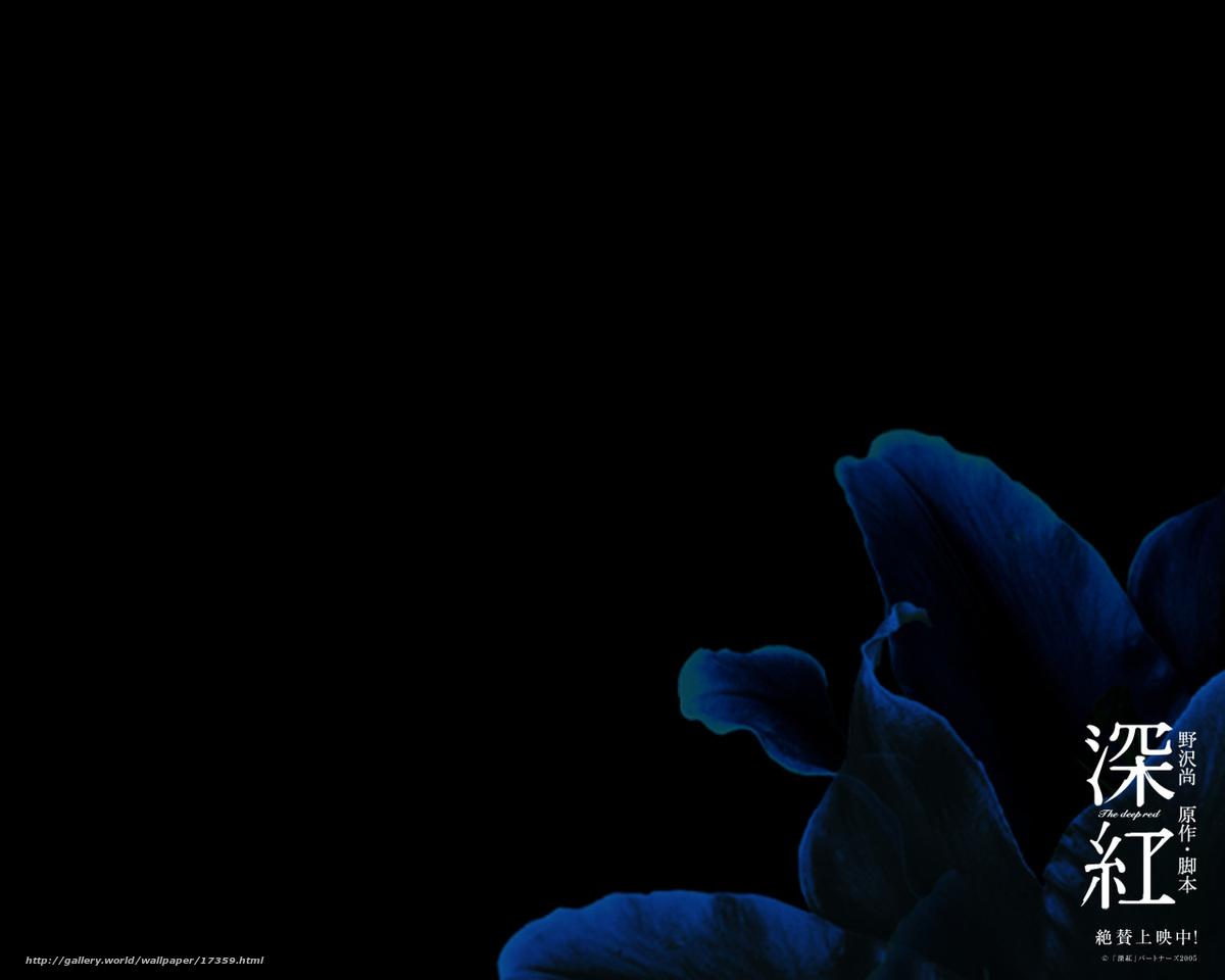 Download wallpaper Темно-красный,  Shinku,  film,  movies free desktop wallpaper in the resolution 1280x1024 — picture №17359