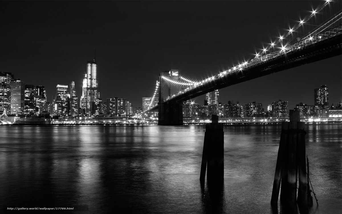 Download Wallpaper New York Bridge Lights Black And White Free Desktop Wallpaper In The Resolution 1920x1200 Picture 17789
