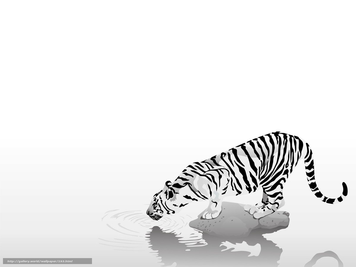 Download wallpaper animals,  tiger,  strips,  black and white free desktop wallpaper in the resolution 1600x1200 — picture №193