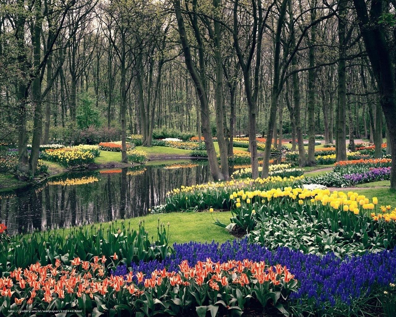 Scaricare Gli Sfondi Primavera Fiori Giardino Sfondi Gratis Per La