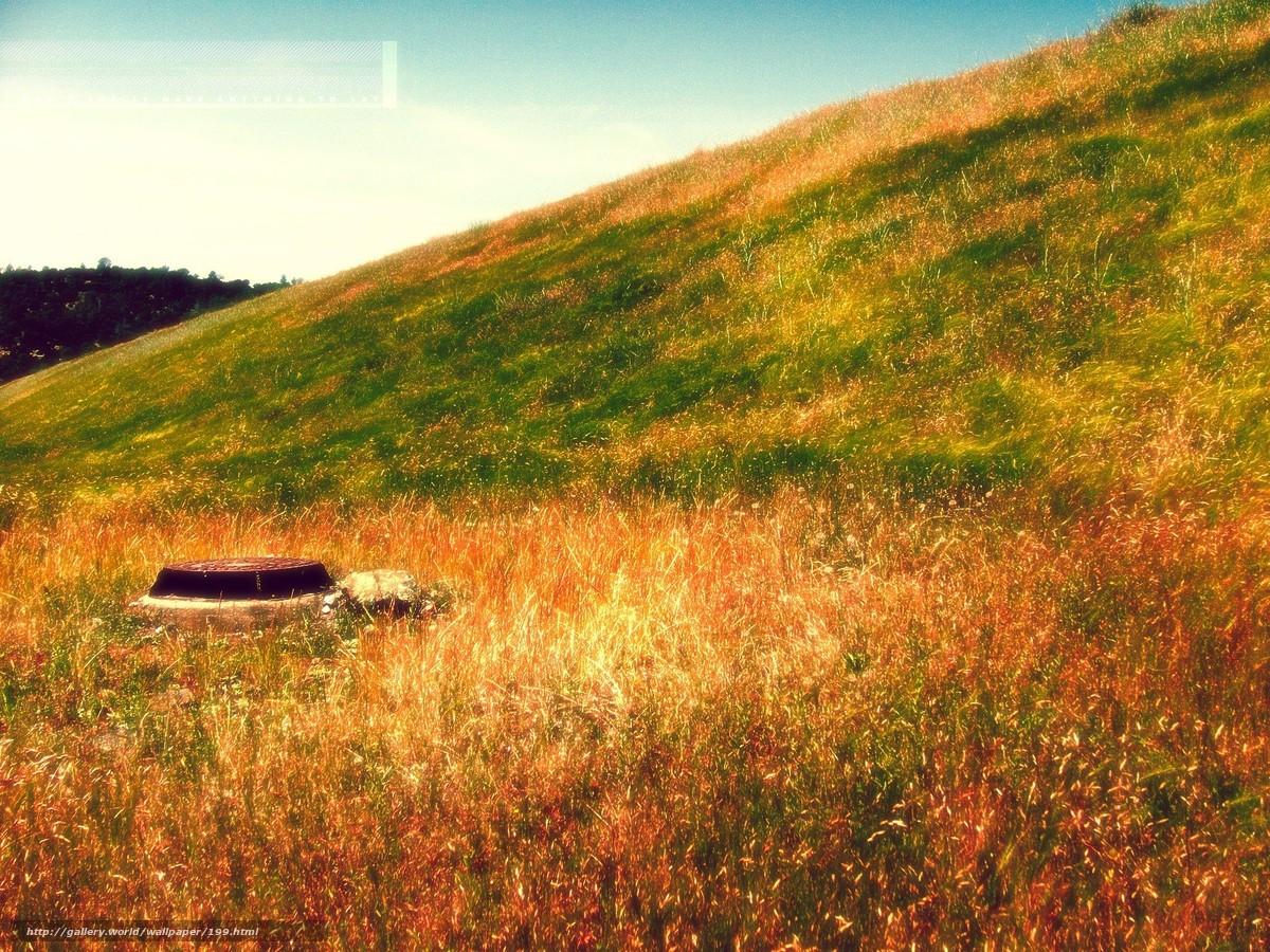 Скачать обои природа,  пейзаж,  ландшафт,  желтая трава бесплатно для рабочего стола в разрешении 1600x1200 — картинка №199