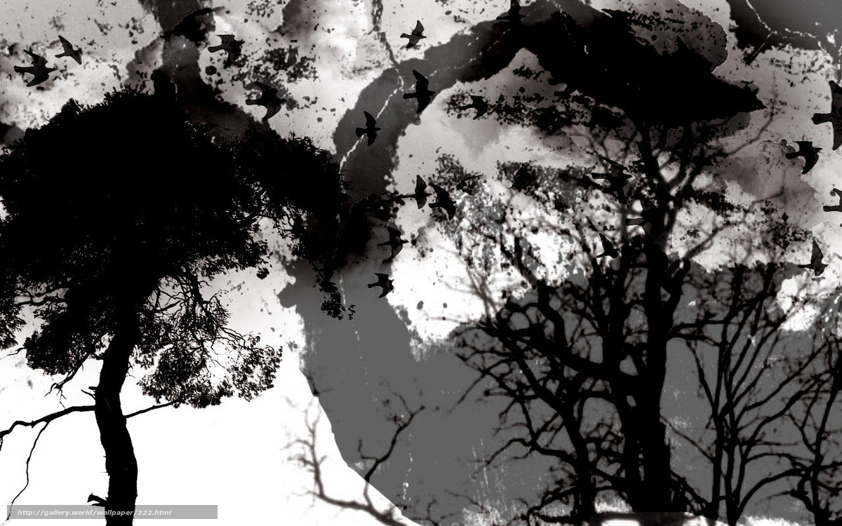 Descargar gratis oscuridad,  oscuro,  cielo,  luz Fondos de escritorio en la resolucin 1280x800 — imagen №222