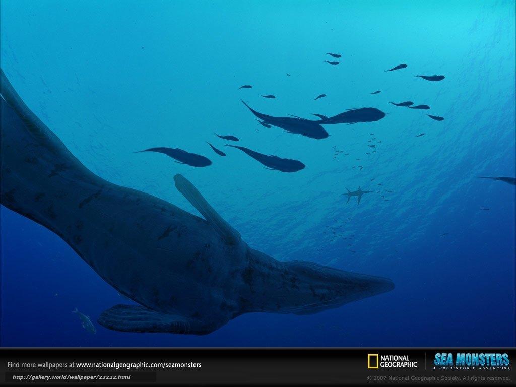 Tlcharger Fond d'ecran Monstres de la mer 3D: Une aventure prhistorique,  Sea Monsters: A Prehistoric Adventure,  film,  film Fonds d'ecran gratuits pour votre rsolution du bureau 1024x768 — image №23222