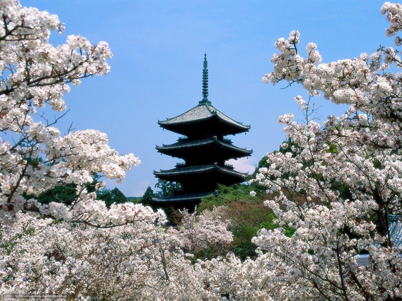 Скачать обои япония,   пагода,   храм,   весна бесплатно для рабочего стола в разрешении 1600x1200 — картинка №234140