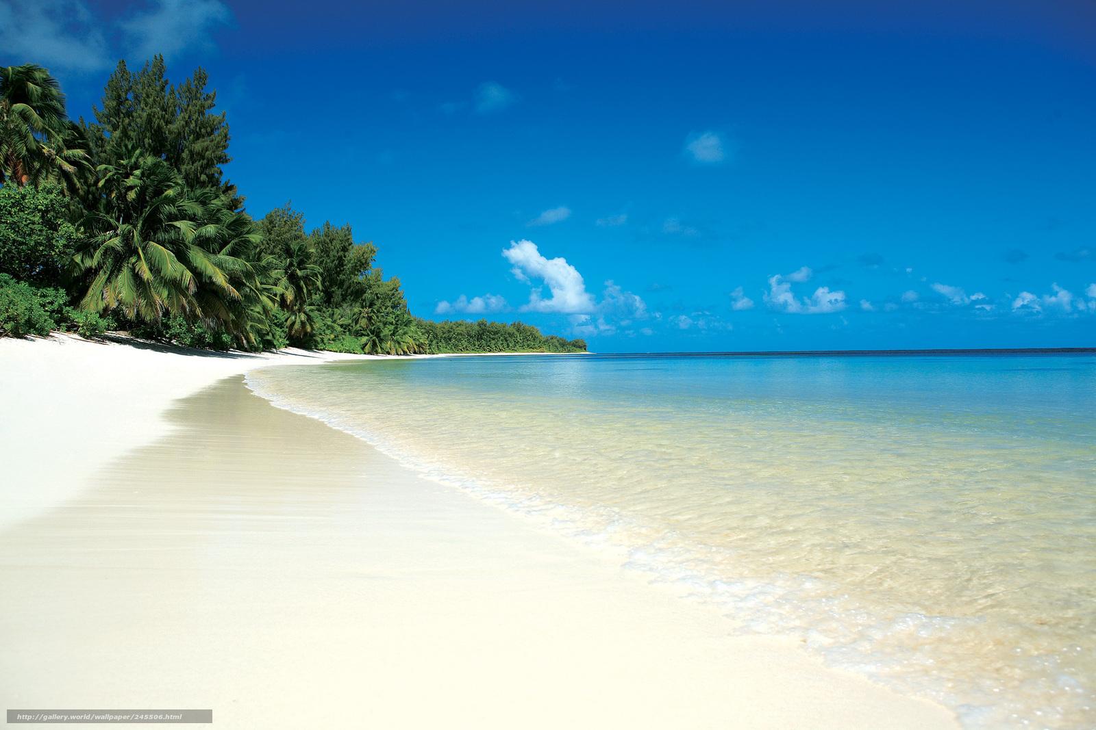 Download wallpaper tropics,  sea,  beach,  sand free desktop wallpaper in the resolution 2205x1470 — picture №245506
