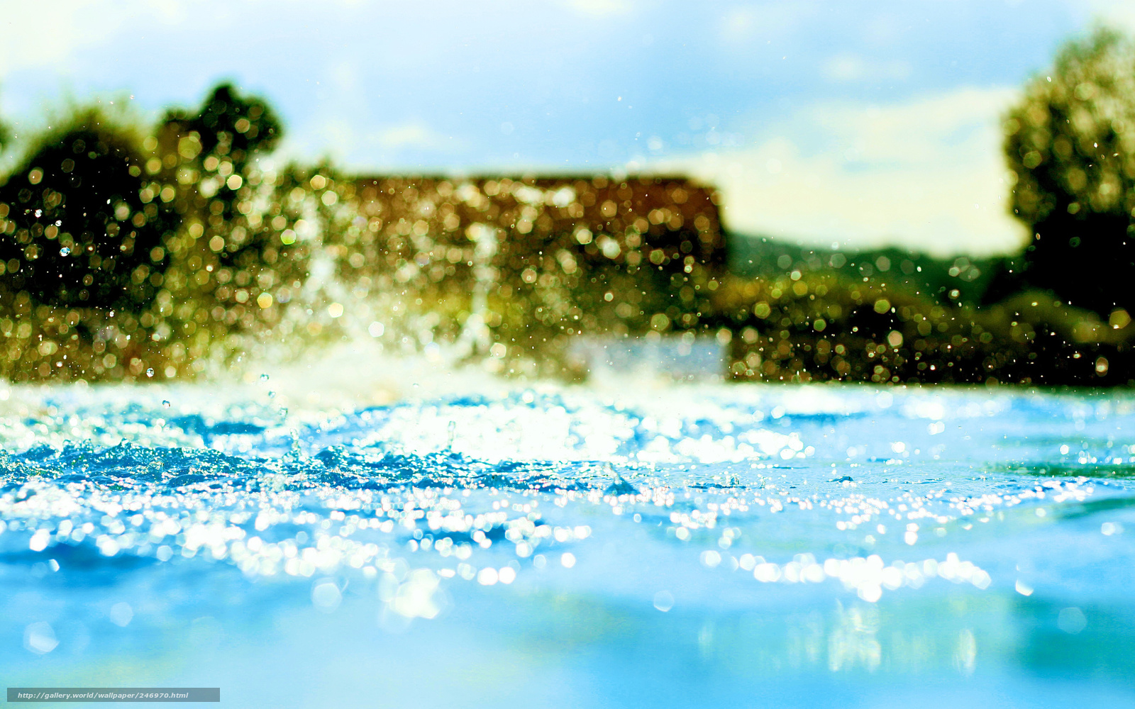 Pool Water Splash download wallpaper pool, water, trees, bokeh free desktop