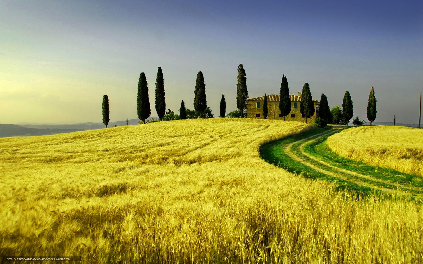 Scaricare gli sfondi natura italia toscana campo sfondi for Immagini per desktop natura