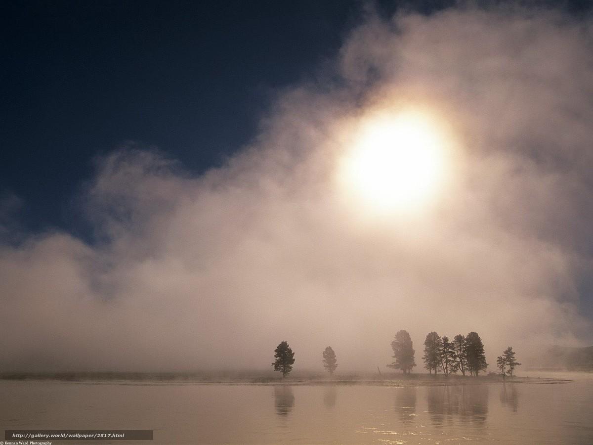 Скачать обои солнце,  деревья,  туман бесплатно для рабочего стола в разрешении 1600x1200 — картинка №2517