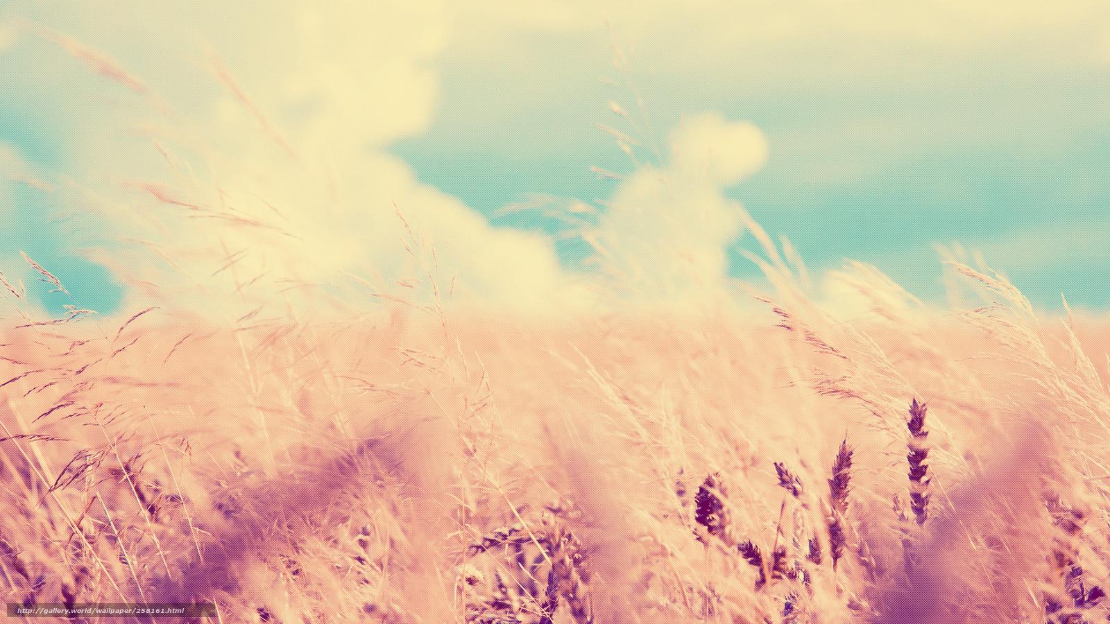 Descargar Gratis Cereales Cielo Las Nubes Fondos De