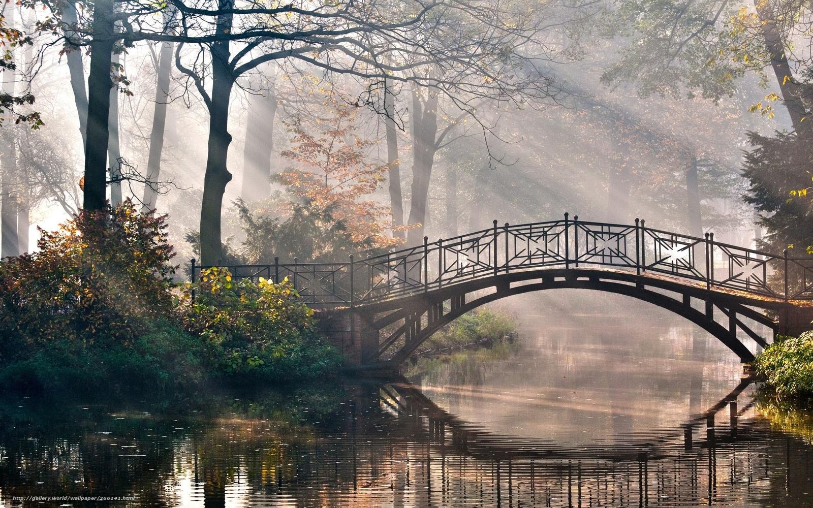 Скачать обои пейзажи,  вид,  красиво,  сказочно бесплатно для рабочего стола в разрешении 2560x1600 — картинка №266141
