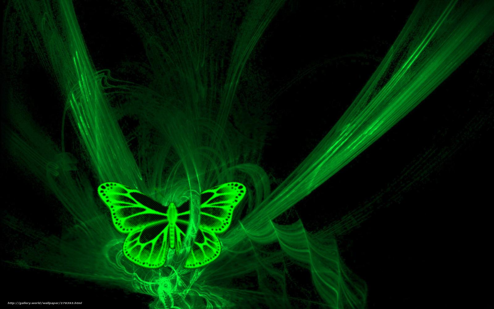 Scaricare Gli Sfondi Farfalla Neon Nero Verde Sfondi Gratis Per