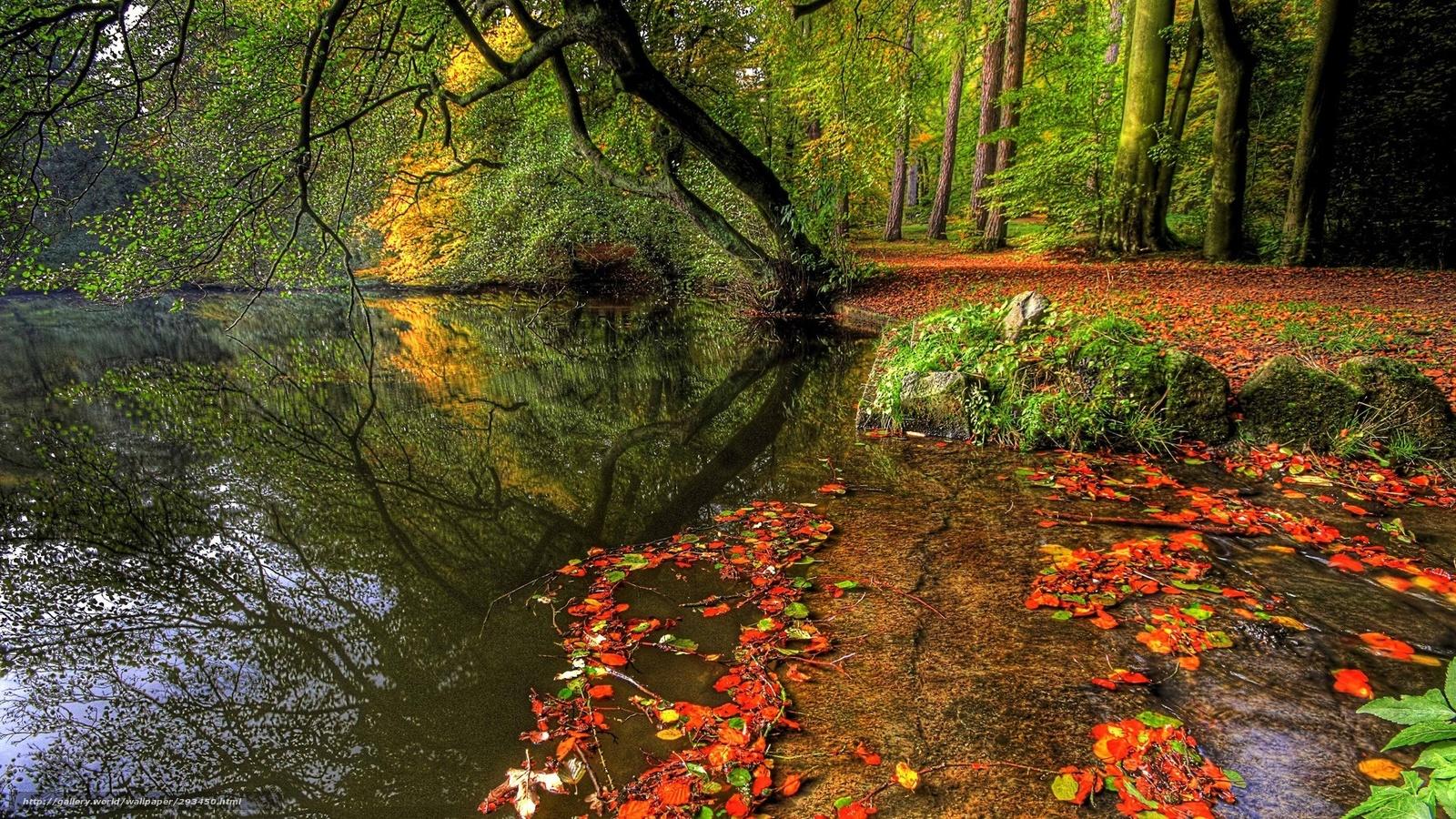 壁紙をダウンロード 風景 ビュー 美しさ 秋 デスクトップの解像度のための無料壁紙 19x1080 絵