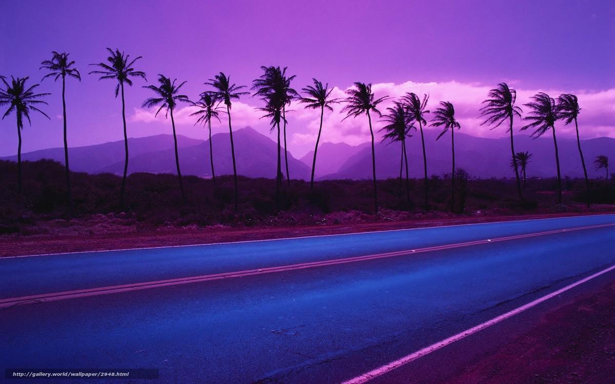 Descargar gratis carretera,  Palms,  Montaas,  Color Fondos de escritorio en la resolucin 1920x1200 — imagen №2948