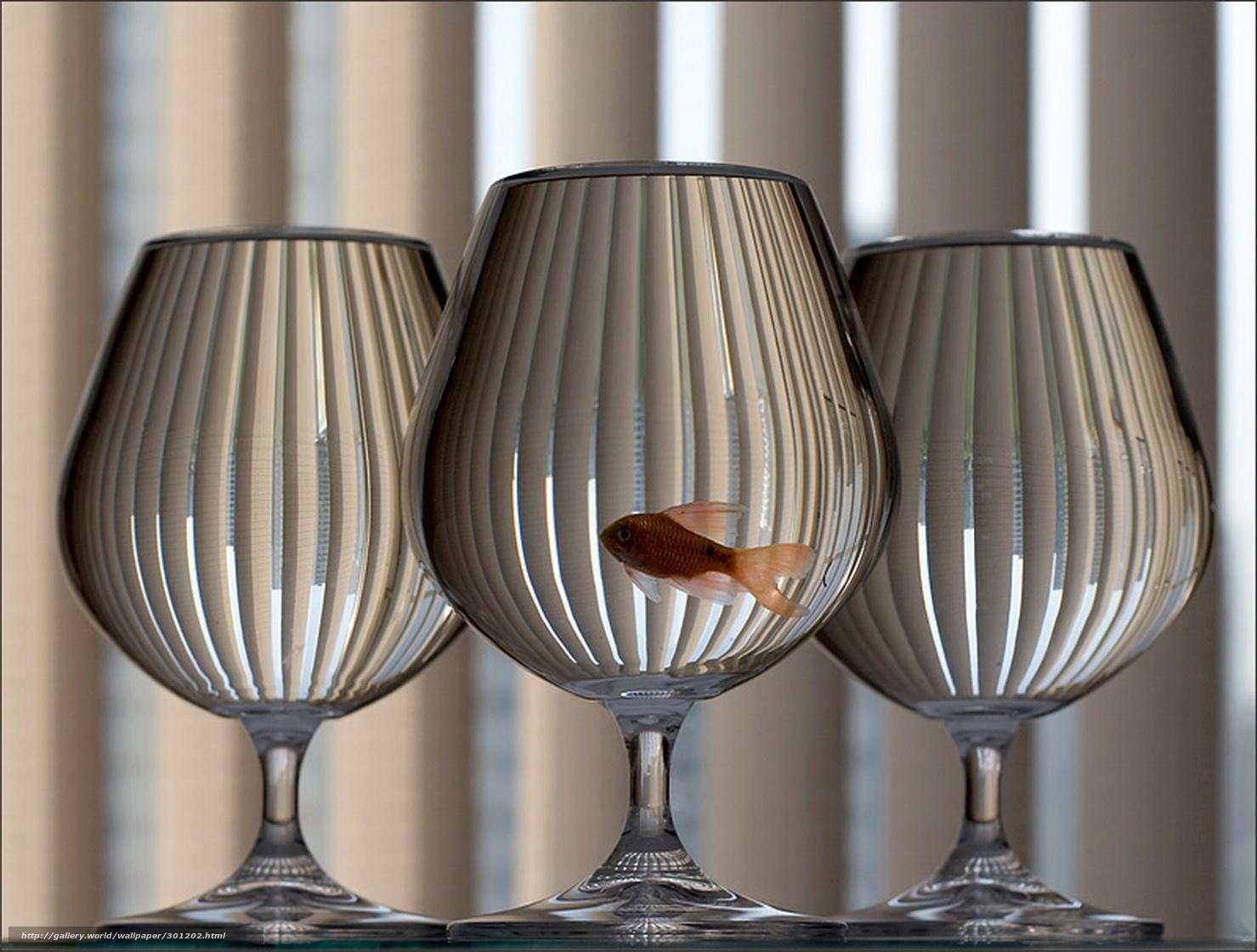 Скачать обои три,   бокала,   золотая,   рыбка бесплатно для рабочего стола в разрешении 1479x1120 — картинка №301202
