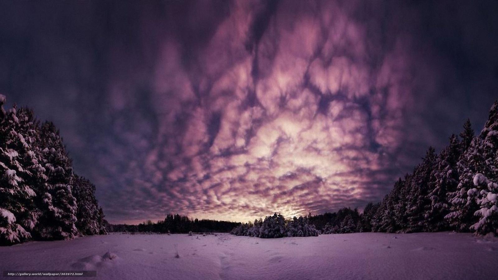 Scaricare gli sfondi lilla mattina nei boschi d 39 inverno for Desktop gratis inverno