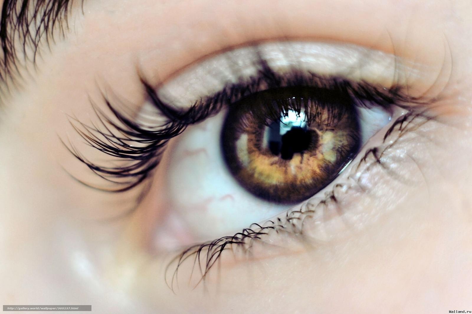 Скачать обои глаз,   взгляд,   макияж бесплатно для рабочего стола в разрешении 1920x1275 — картинка №305237
