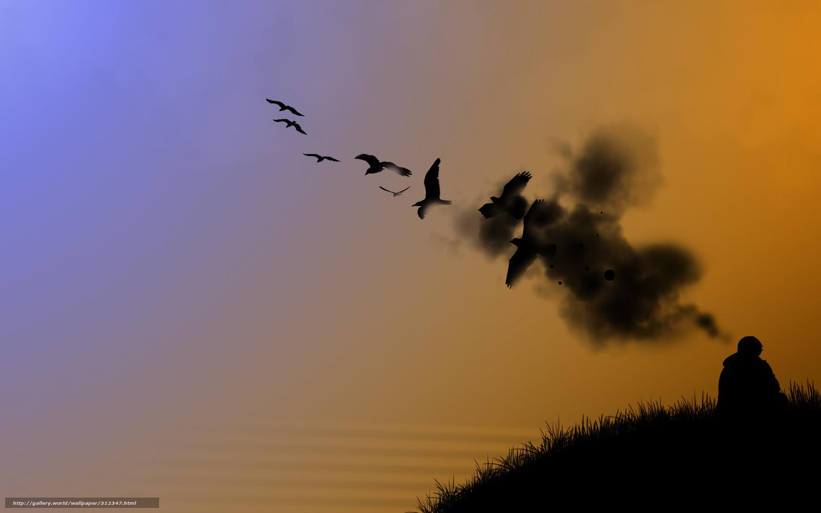 Tlcharger Fond D'ecran Chasseur, Orange, Ciel, Oiseaux