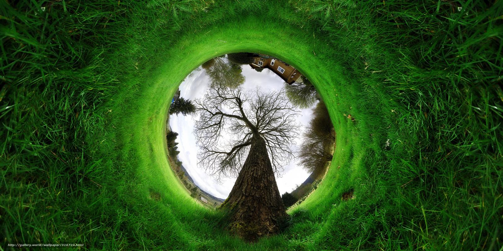 Descargar gratis abstraccin,  paisaje,  rbol,  hierba Fondos de escritorio en la resolucin 4000x2000 — imagen №316724