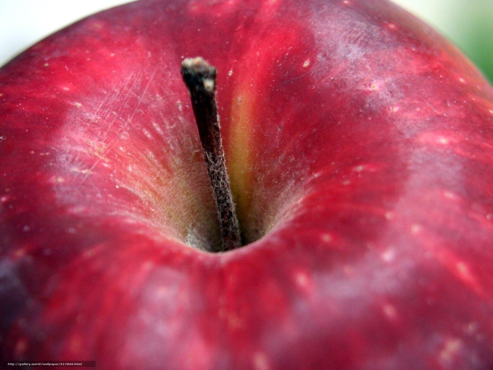 Apple fruit images download - Download Wallpaper Macro Apple Fruit Free Desktop Wallpaper In The Resolution 1600x1200 Picture 317809