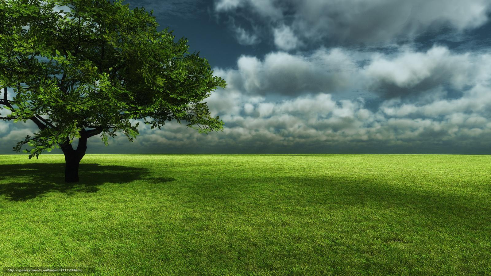 tlcharger fond decran arbre ciel herbe fonds decran gratuits pour votre rsolution du bureau 1920x1080 image 321243 - Arbre Ciel