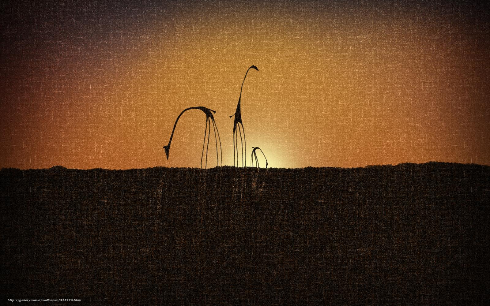 Tlcharger fond d 39 ecran style girafes coucher du soleil for Fond ecran style