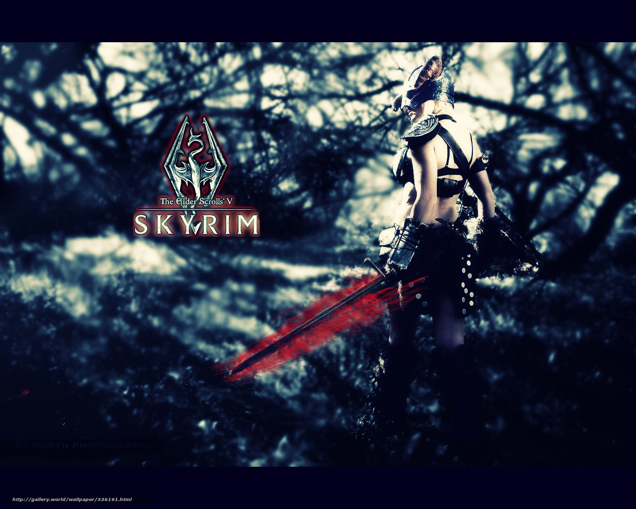 download wallpaper tes v - skyrim, tes, skyrim, warrior free desktop