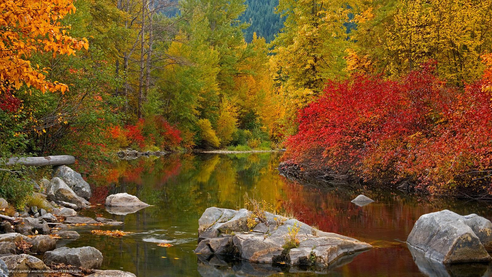 Scaricare gli sfondi autunno fiume foresta alberi for Autunno sfondi desktop