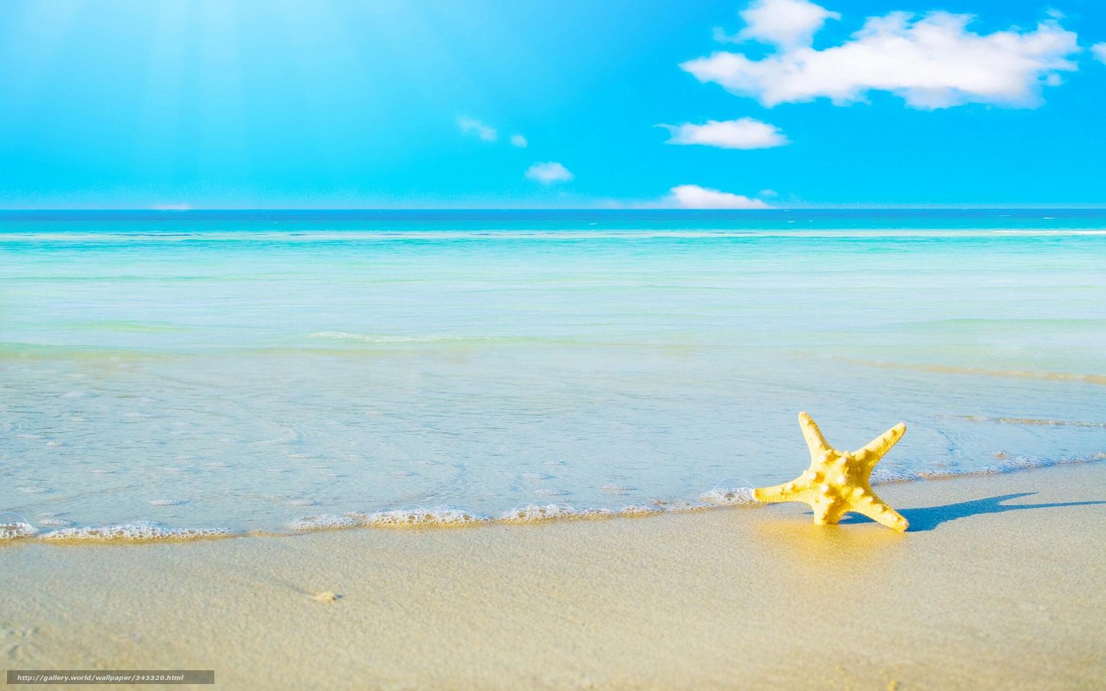 Scaricare Gli Sfondi Mare Oceano Costa Sabbia Sfondi Gratis Per