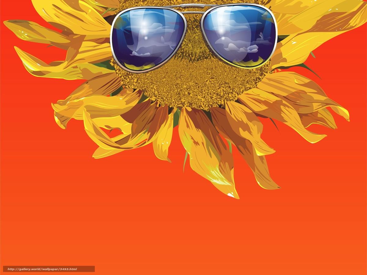 Descargar gratis girasol,  gafas,  vector,  naranja Fondos de escritorio en la resolucin 1920x1440 — imagen №3493