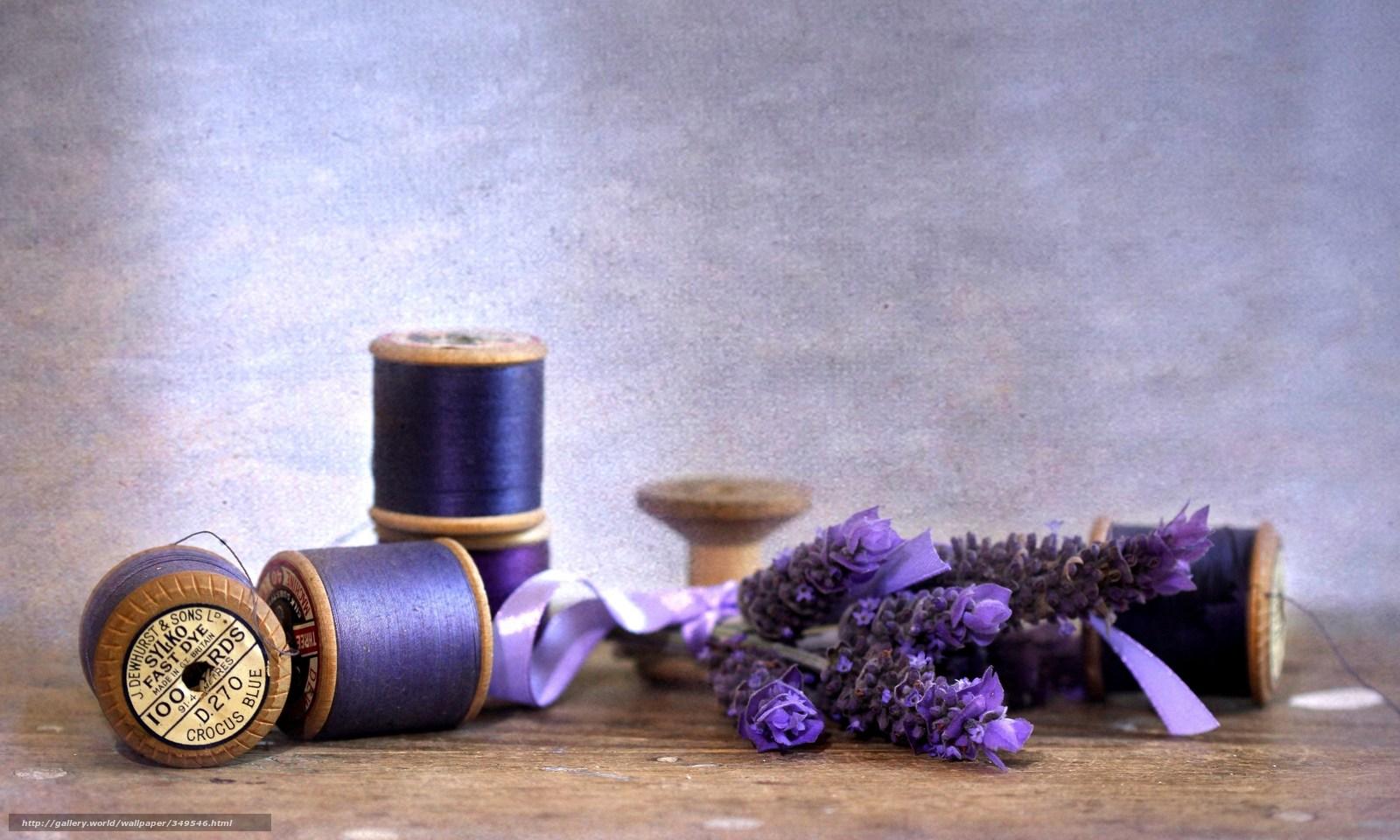 Скачать обои лаванда,  цветы,  цветок,  фиолетовый бесплатно для рабочего стола в разрешении 3800x2280 — картинка №349546