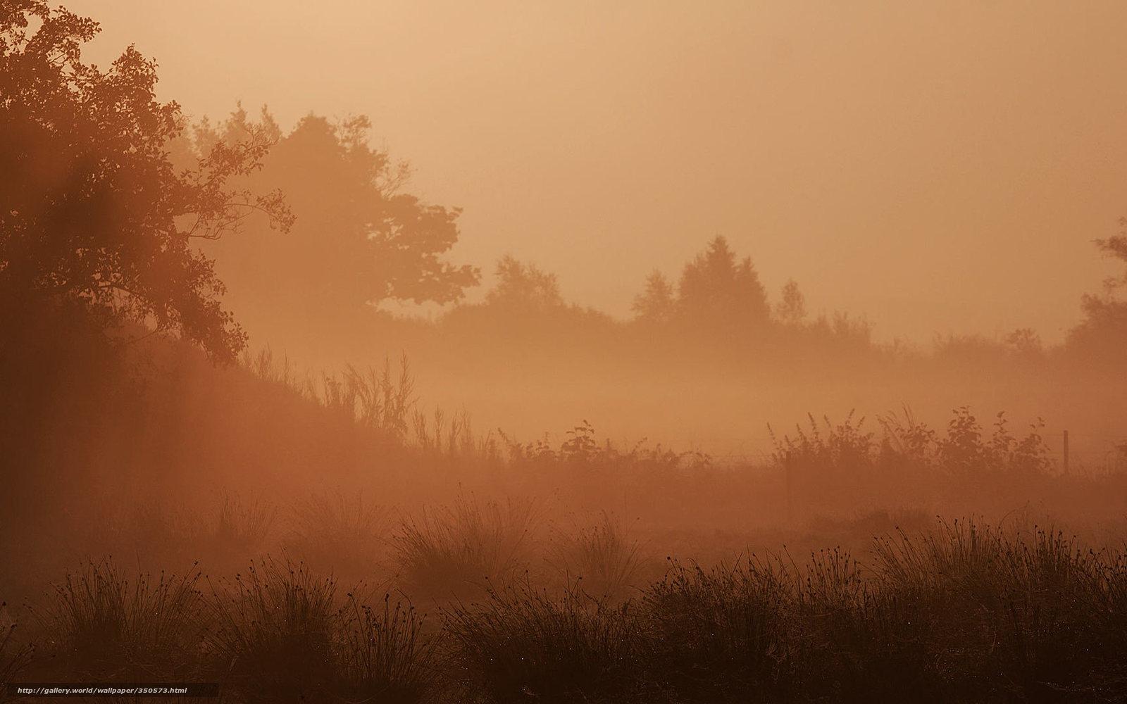 Descargar gratis naturaleza paisaje niebla papel for Papel pintado paisajes