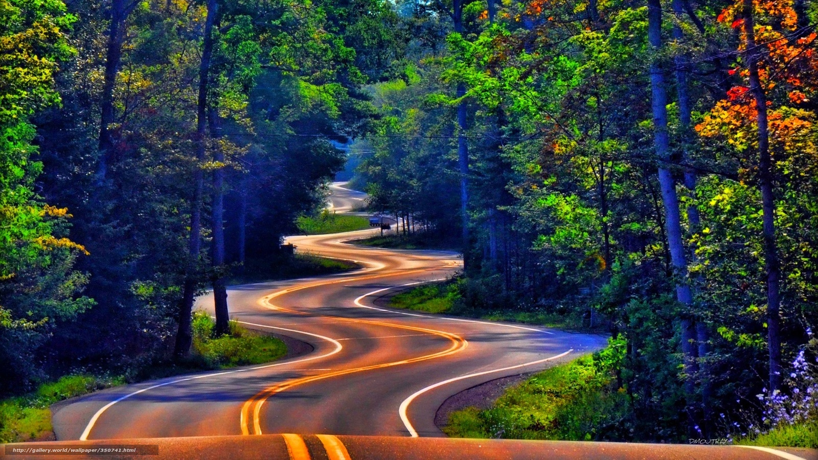 Download Wallpaper Nature Summer Road Serpentine Free Desktop In The Resolution 1920x1080 Picture No350741