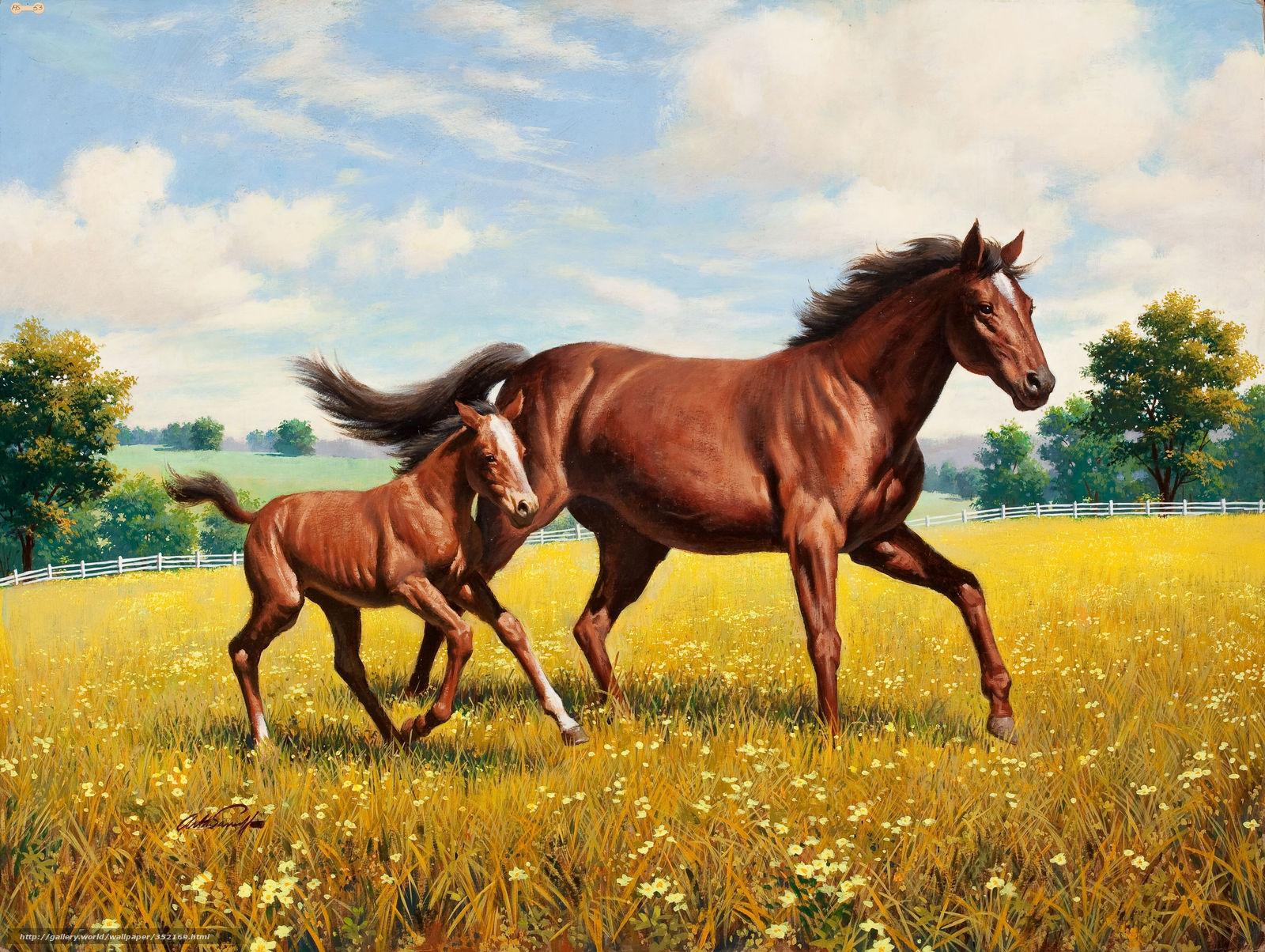 peinture chevaux wallpaper - photo #9