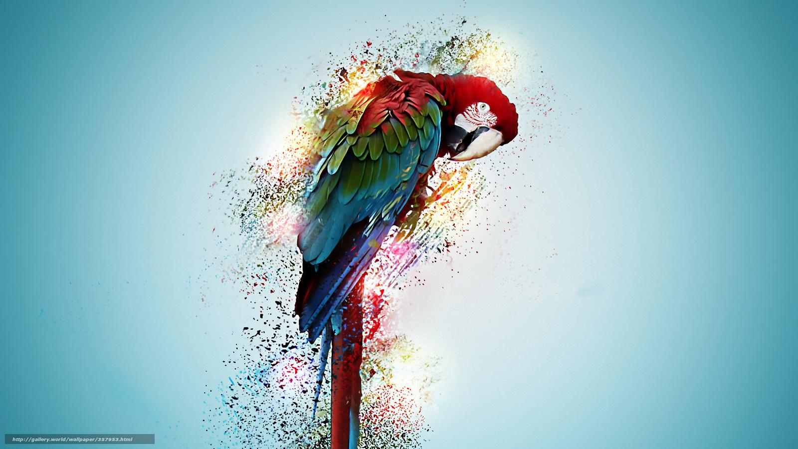 Tlcharger fond d 39 ecran perroquet peintures tic tac fonds for Fond ecran animaux hd