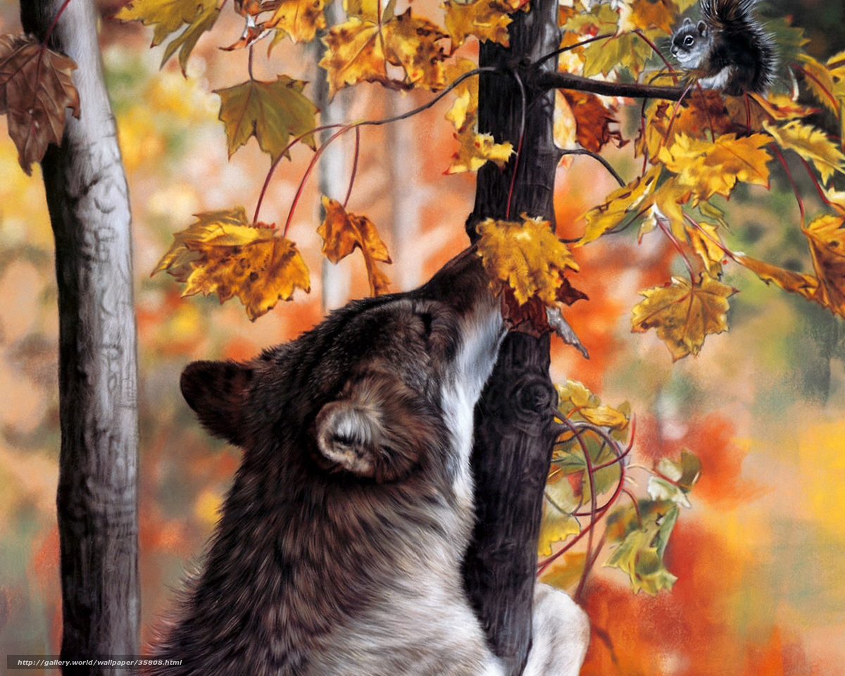 Картинки волки осень