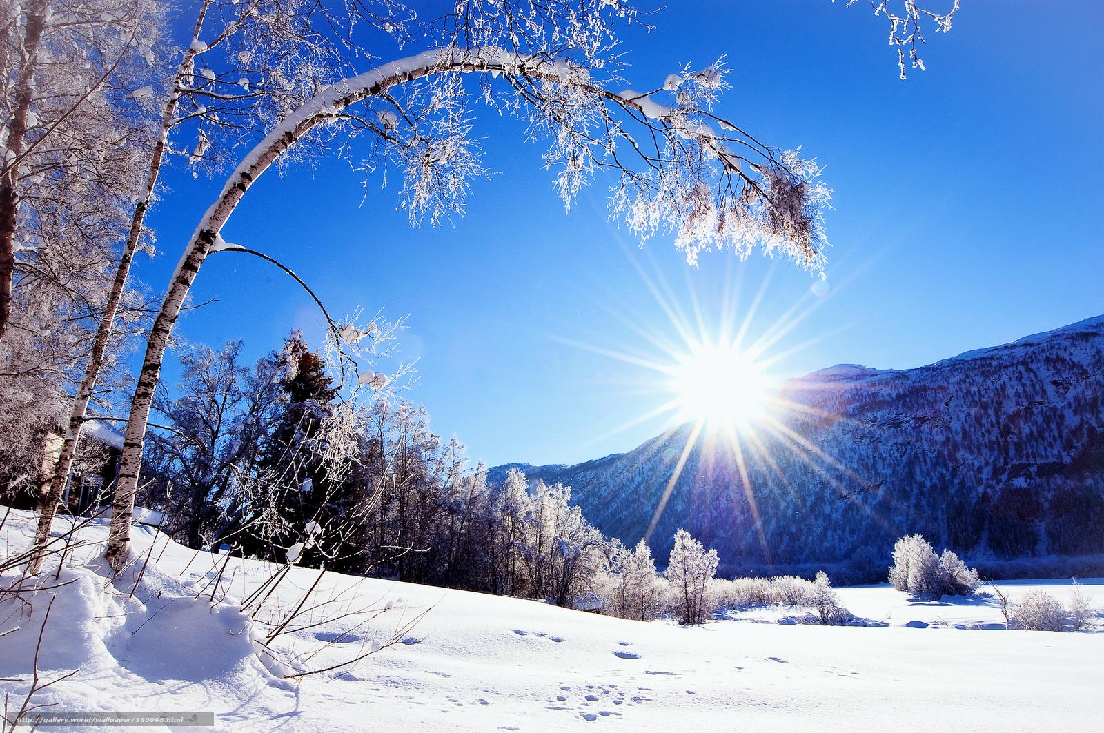 Tlcharger Fond D Ecran Nature Neige Hiver Soleil Fonds D Ecran Gratuits Pour Votre Rsolution Du Bureau 2560x1700 Image 360096